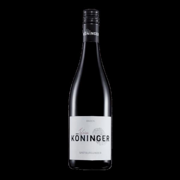 Kappelrodecker Spätburgunder Qualitätswein mild Weingut Tobias Köninger